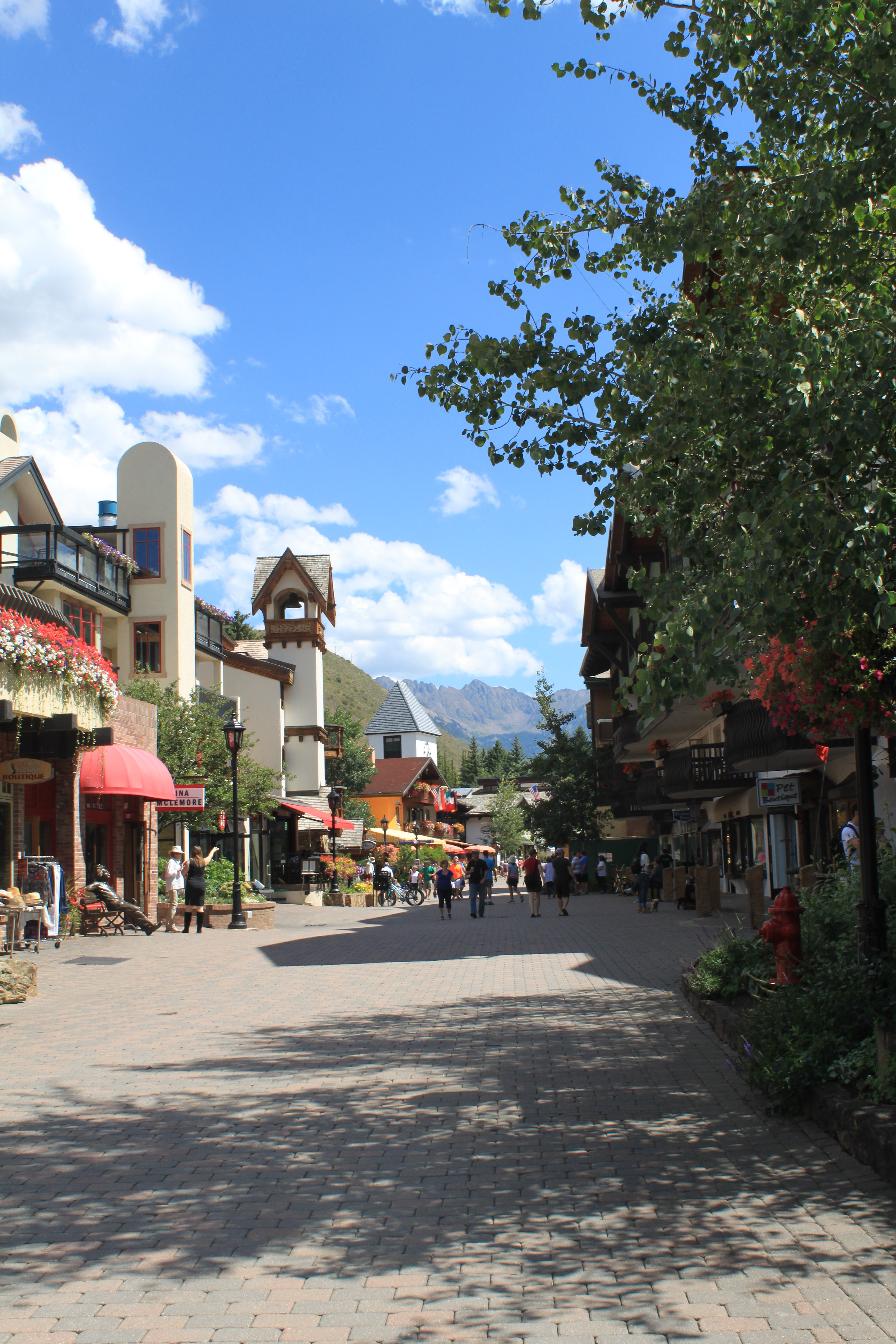 Vail Valley I wit & whimsy