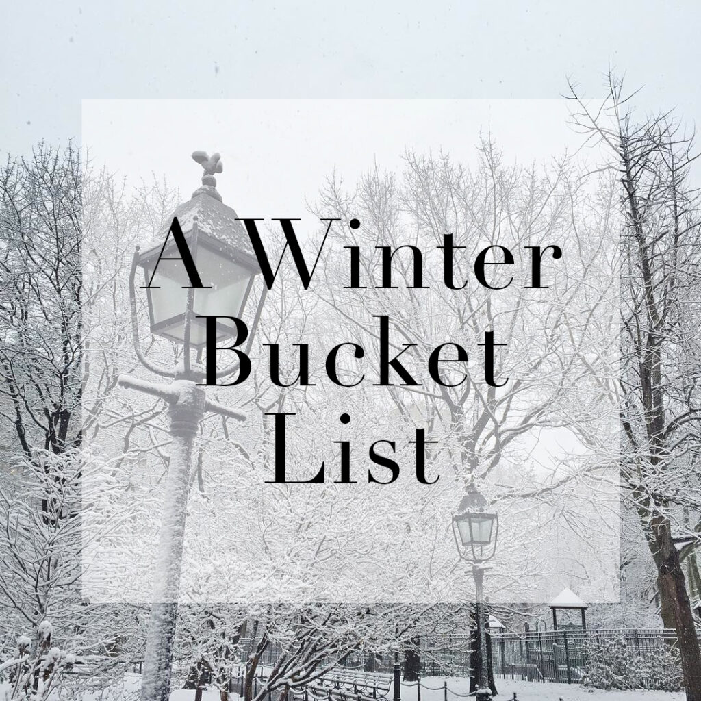 Winter Bucket List from wit & whimsy