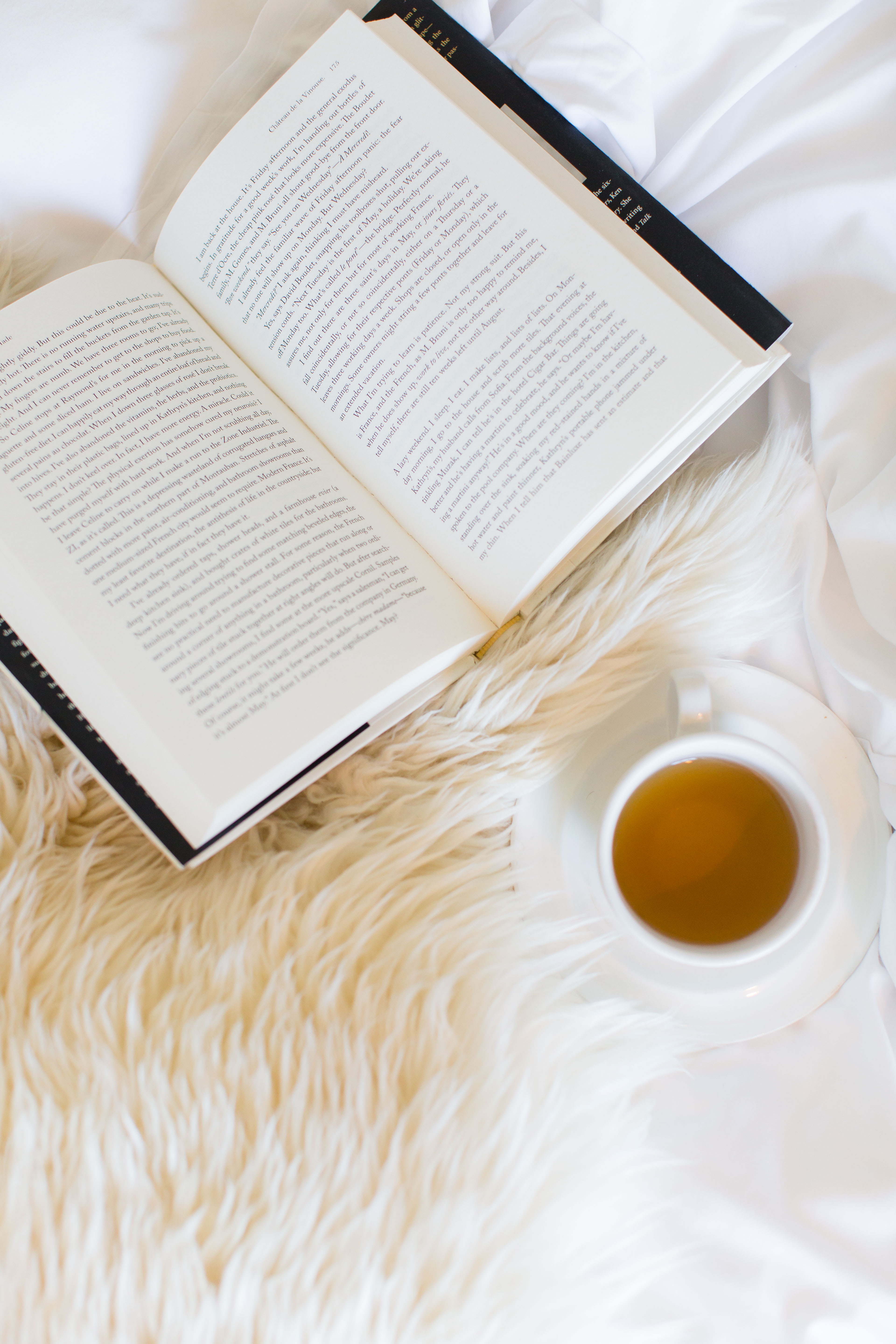 Winter reading I wit & whimsy