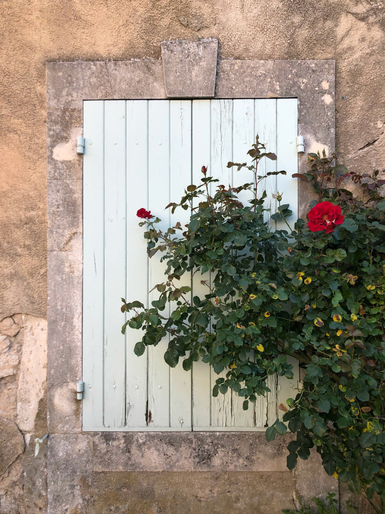 Ménerbes in Provence I wit & whimsy