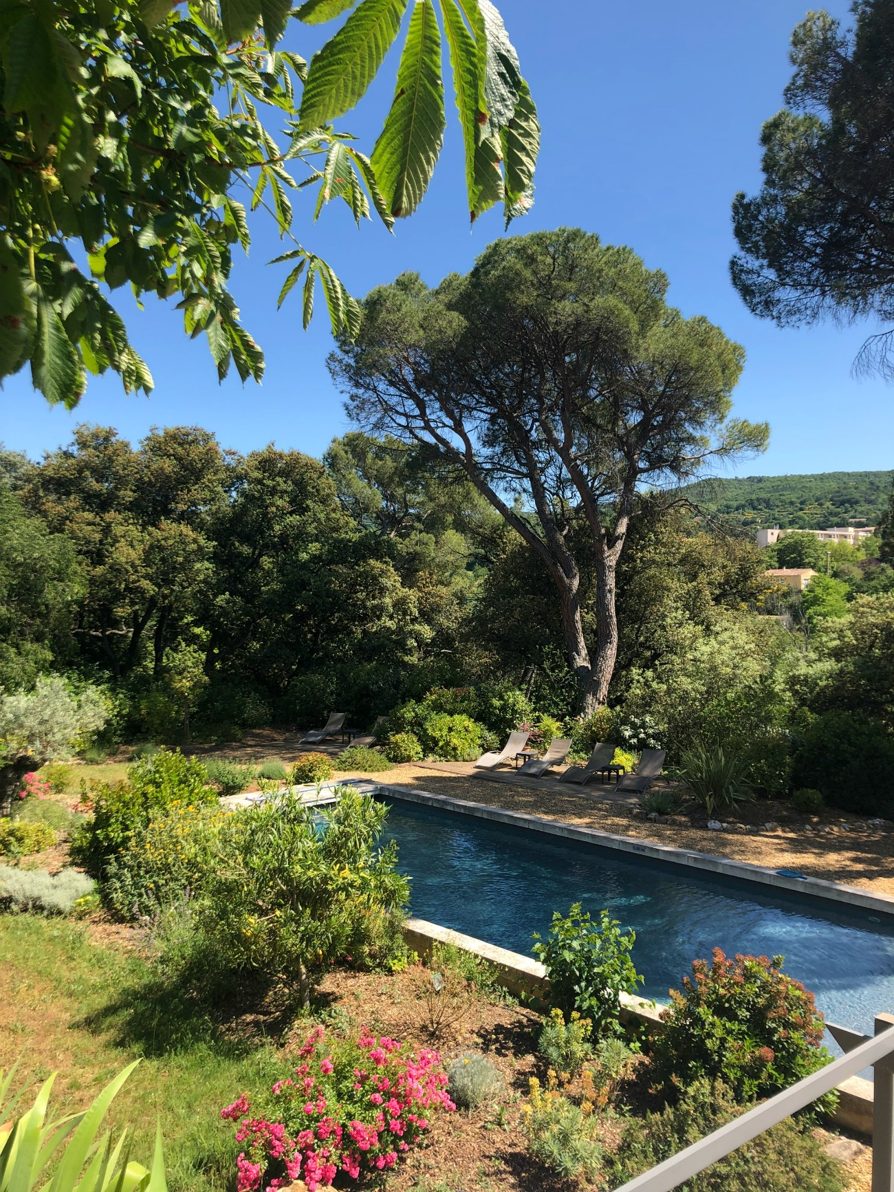 Provence Airbnb I wit & whimsy